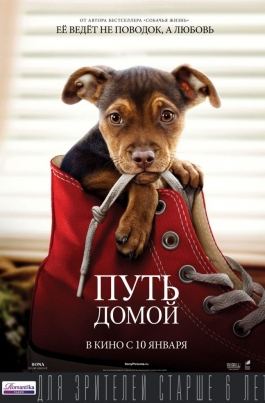 Путь домойA Dog's Way Home постер